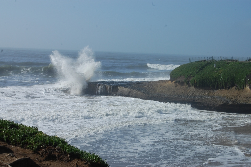 2. surf & spray