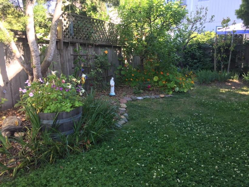 18-6 Side Garden